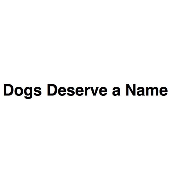 <i>Dogs Deserve a Name</i>
