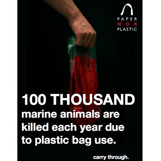 <i>Paper Nor Plastic</i>