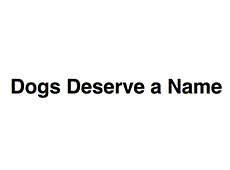 <i>Dogs Deserve a Name</i>