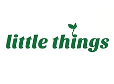 <i>Little Things</i>