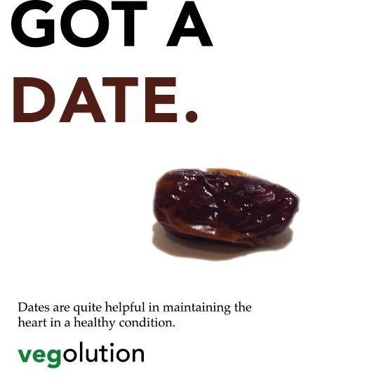 <i>Vegolution</i>