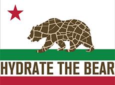 <i>Hydrate the Bear</i>