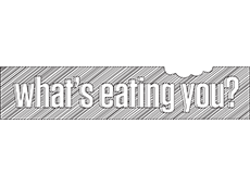 <i>What's Eating You?</i>