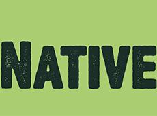 <i>Native</i>