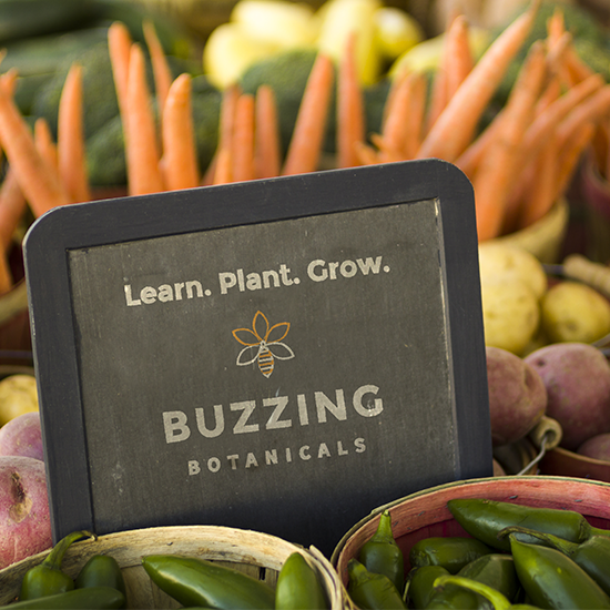 <i>Buzzing Botanicals</i>