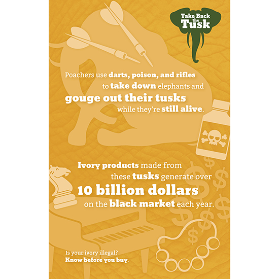 <i>Take Back the Tusk</i>