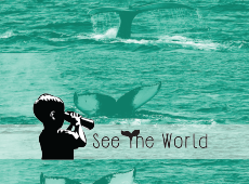 <i>See The World &#8211; Video</i>