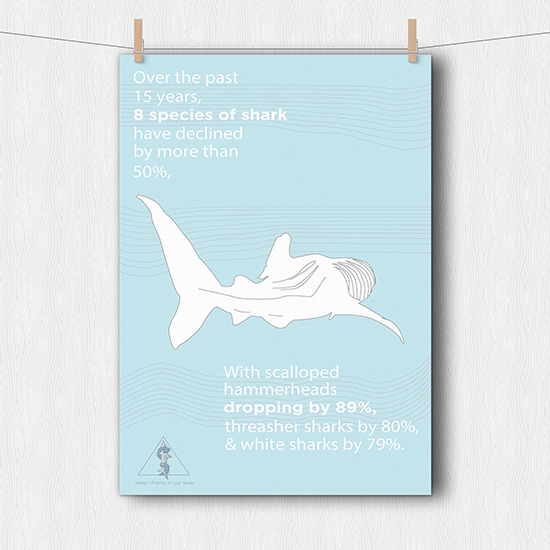<i>Keep Sharks in Our Seas</i>
