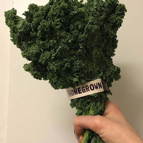 <i>Homegrown</i>