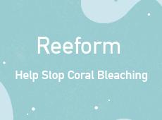 <i>Reeform<i>